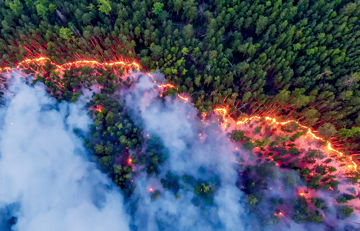 With climate change melting the permafrost in Russia, forest fires rage in Siberia.
